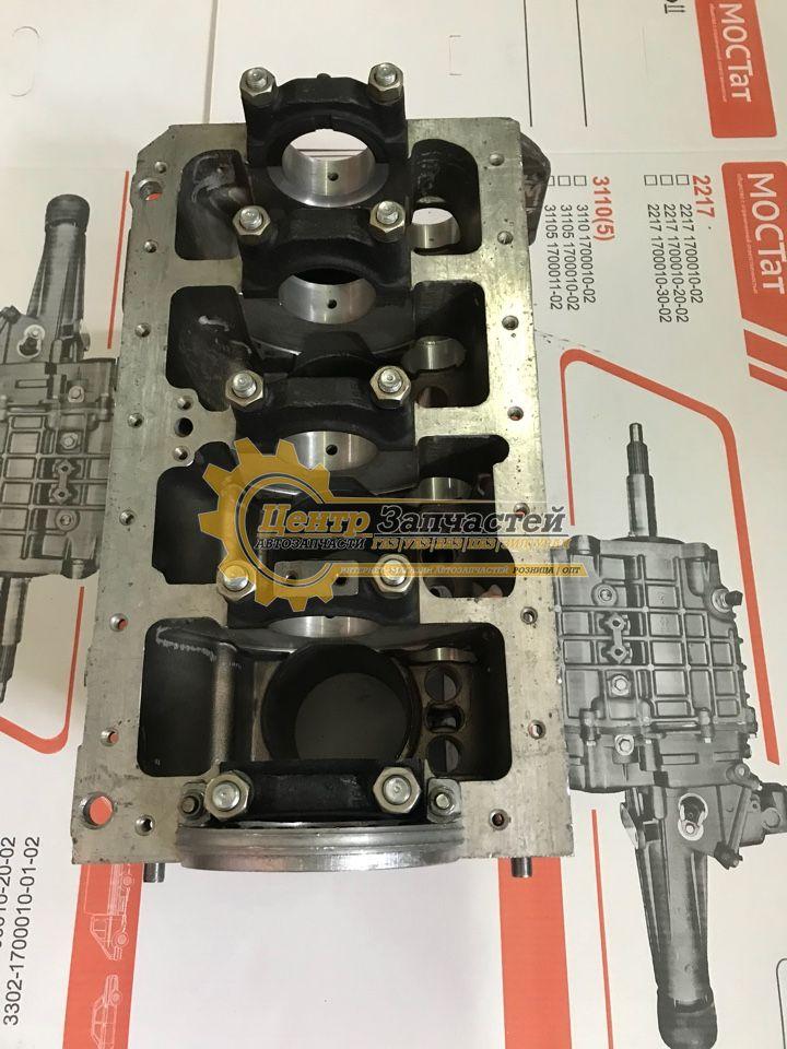 Блок цилиндров двигатель EvoTech 2.7 ГАЗ-A21R23 для Двигателя EvoTech 2.7евро 4.Артикул А274.1002155-13.